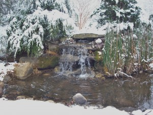 Water falls and pond