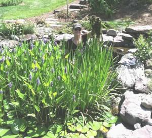 Landscaped pond in Leesburg, Virginia